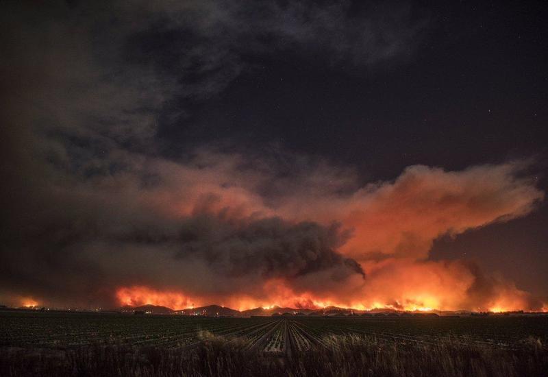 Из-за пожаров на Канарах эвакуировали жителей 40 населенных пунктов