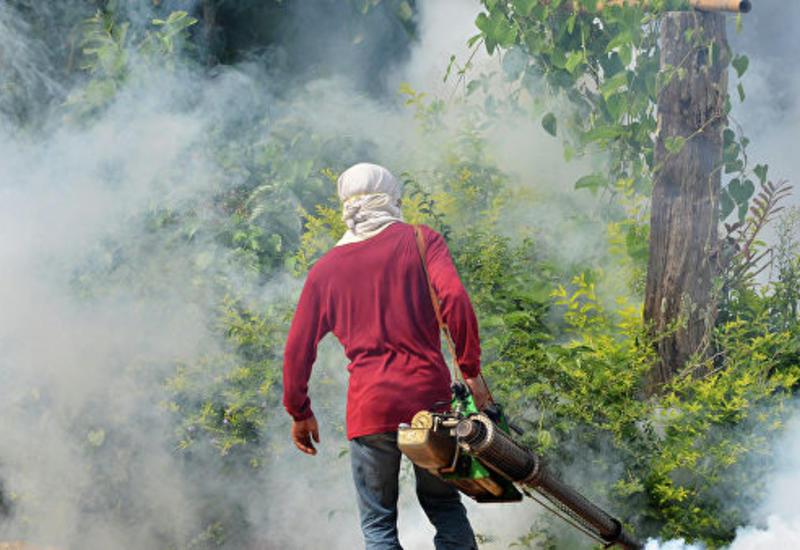 На Филиппинах десятки тысяч человек заразились лихорадкой денге