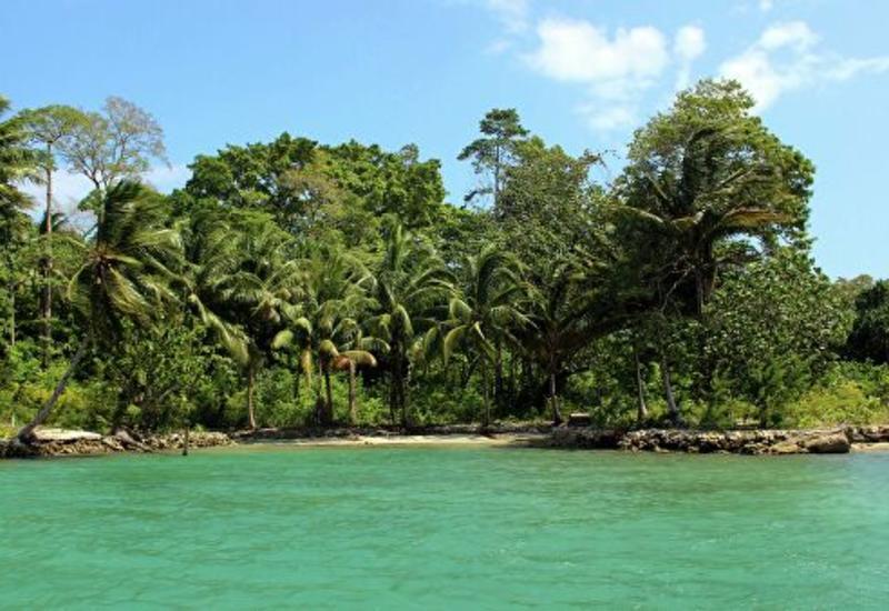 У Соломоновых Островов произошло мощное землетрясение