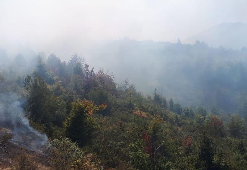 Пожар в Гирканском национальном парке локализован