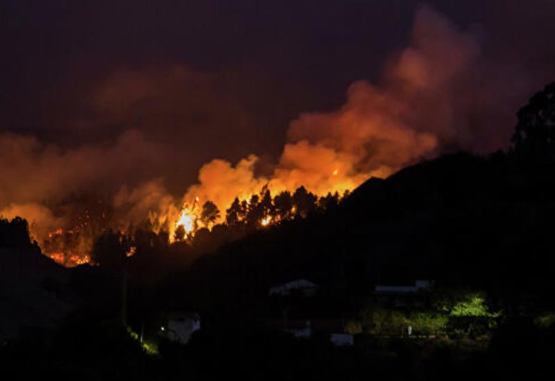 Число эвакуированных из-за природного пожара на Канарах сократилось вдвое