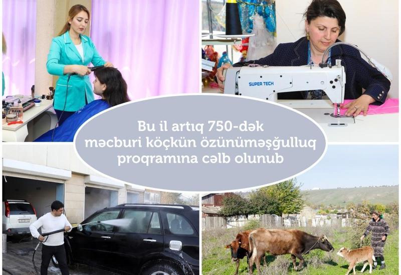 В Азербайджане помогли сотням вынужденных переселенцев открыть свой бизнес