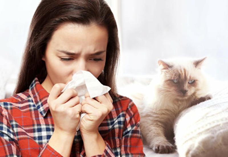 Врач объяснил, почему опасно чихать с закрытыми ртом и носом