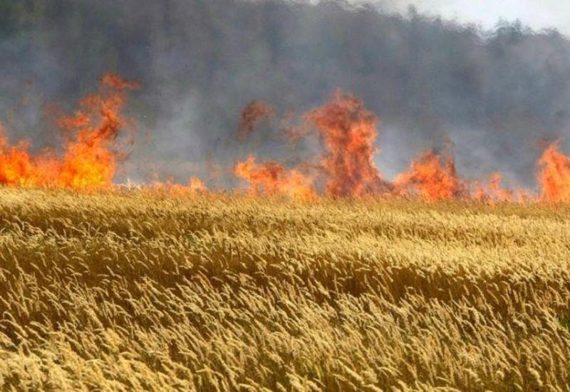 В Худате горит пшеничное поле