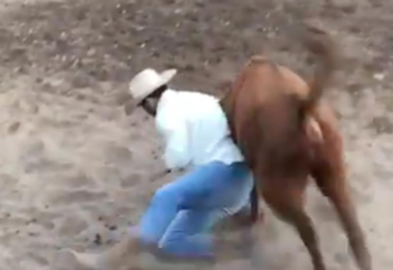Бывший чемпион UFC поборол быка на родео