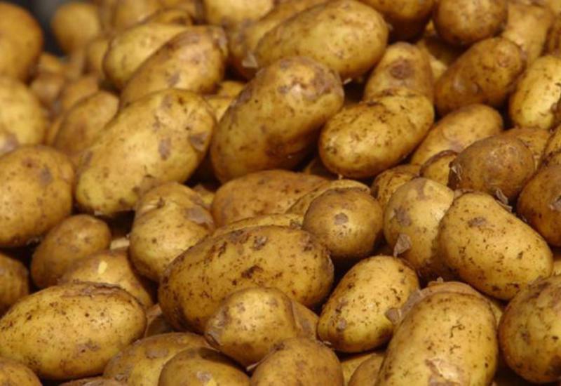 В Азербайджане значительно выросла урожайность картофеля