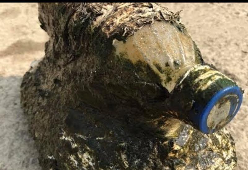 Мужчина выловил из воды бутылку, но «сюрприз» под ней привёл его в ужас