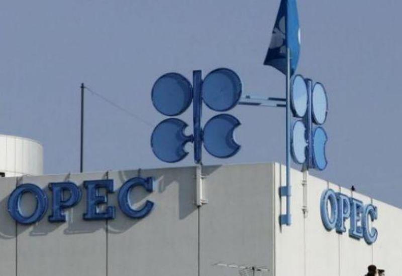 Стало известно, сколько нефти добывает Азербайджан в сутки