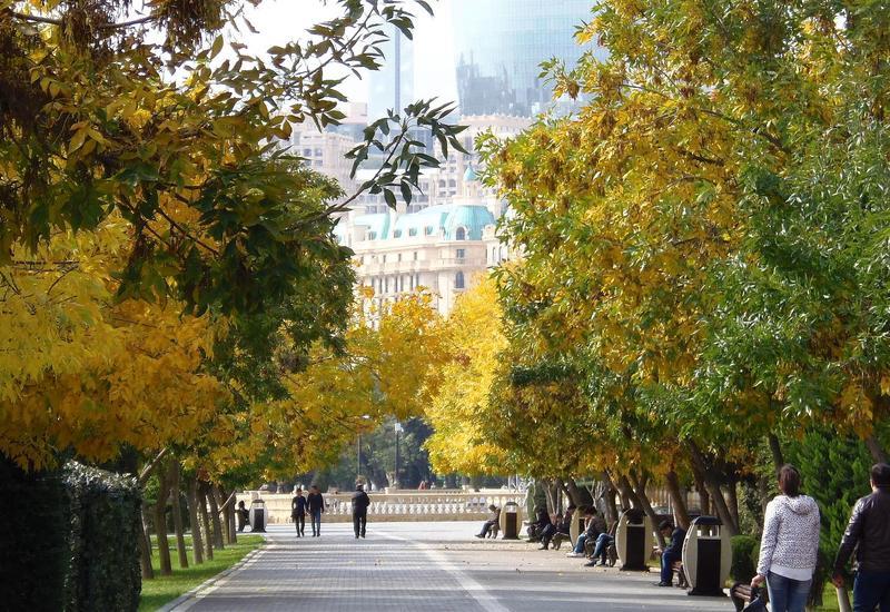7 причин обязательно посетить Баку осенью