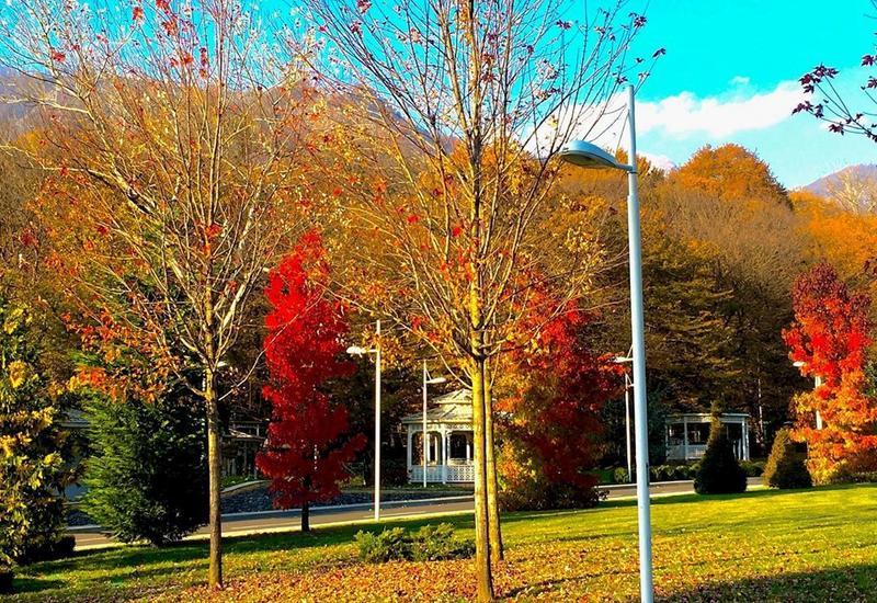Яркая осень в Габале