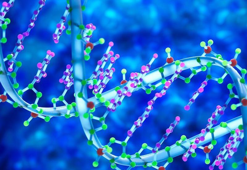 Влияет ли вакцина на ДНК?