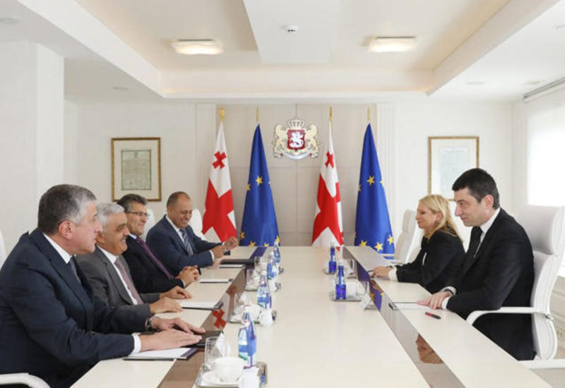 Глава SOCAR на переговорах с премьером Грузии