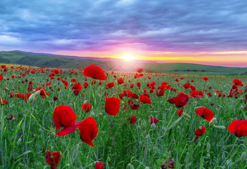 Величие природы Азербайджана в невероятных кадрах
