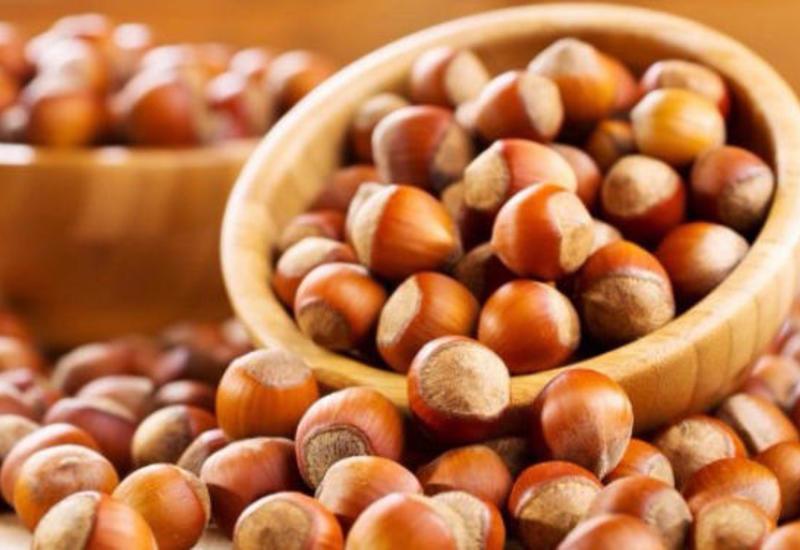 В Загаталы открылся II Международный фестиваль фундука, грецкого ореха и каштана