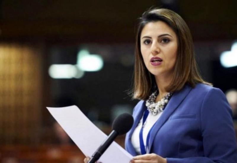 На сессии ПАСЕ рассказали о терактах Армении в Азербайджане