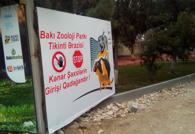 Названы сроки открытия зоопарка в Баку