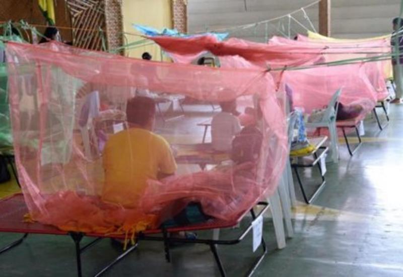В Пакистане десятки тысяч человек заболели лихорадкой денге