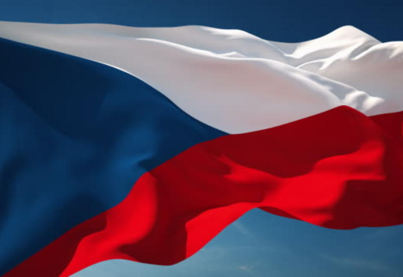 Чехия приостанавливает поставки вооружений в Турцию