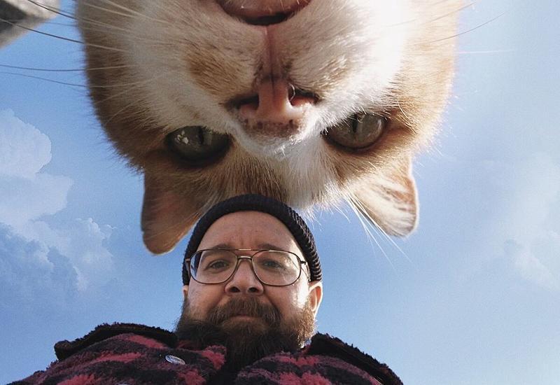 Селфи с огромным котом