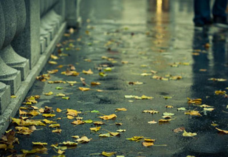 В Баку ожидаются ливни