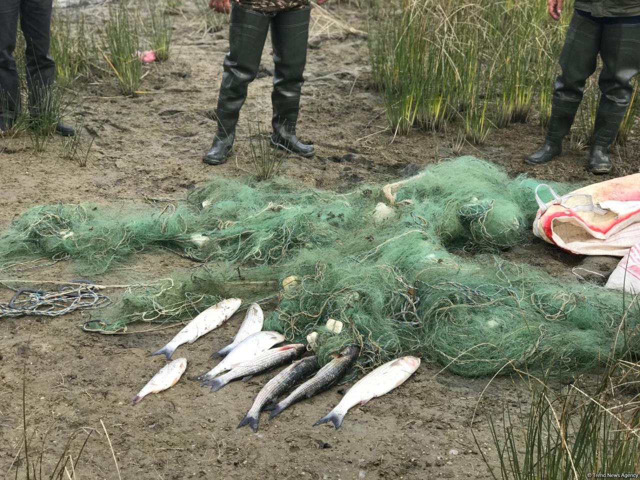 Побережье поселка Зиря очистили от запрещенных орудий рыболовства