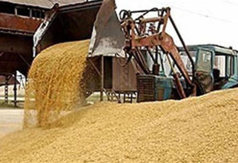 Британский аналитик о привлекательности инвестиций в зерновой рынок
