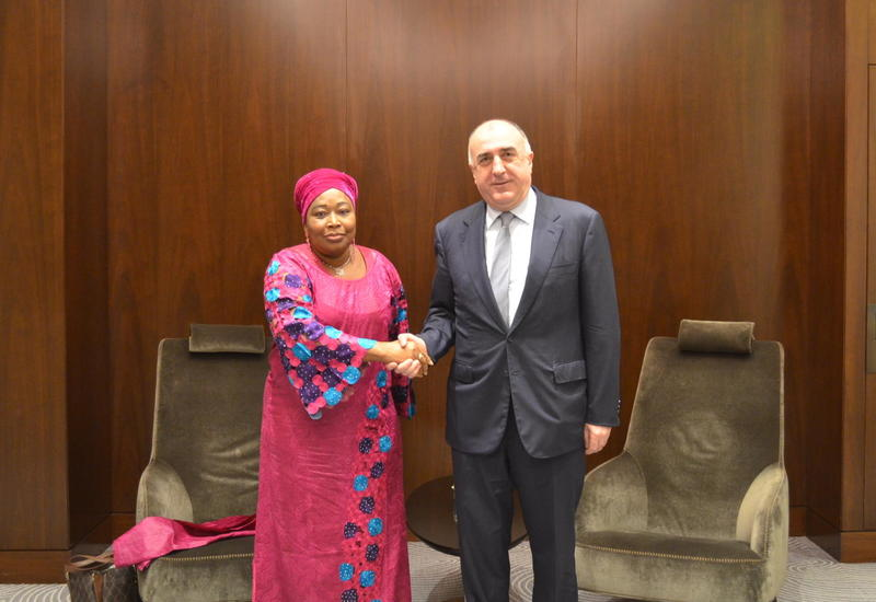 Эльмар Мамедъяров на переговорах с комиссаром Африканского союза