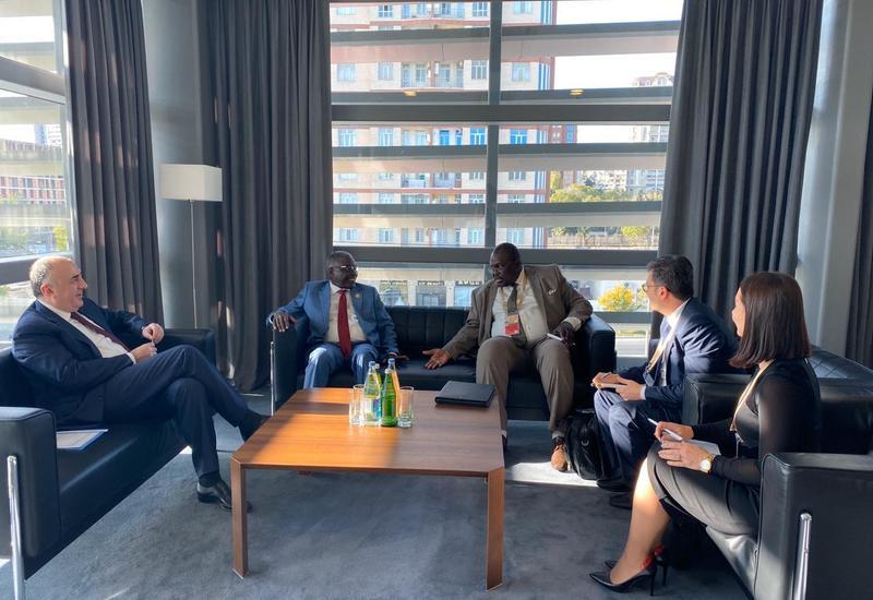 Эльмар Мамедъяров на переговорах с главой МИД Нигера