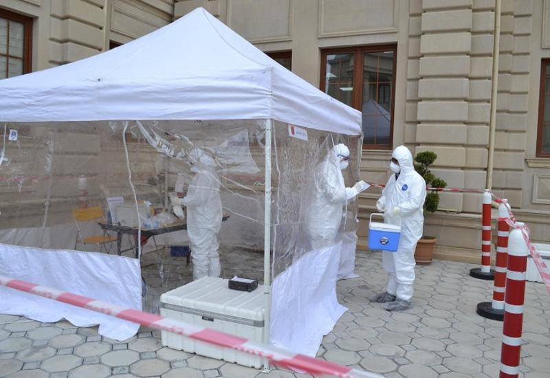 В Азербайджане начинаются мониторинги в связи с «птичьим гриппом»