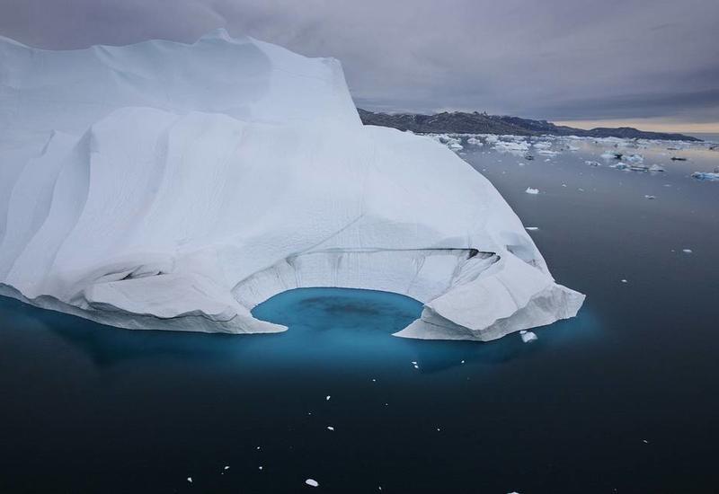 """Таяние льдов Арктики ускорило распространение смертельно опасной """"чумы"""""""
