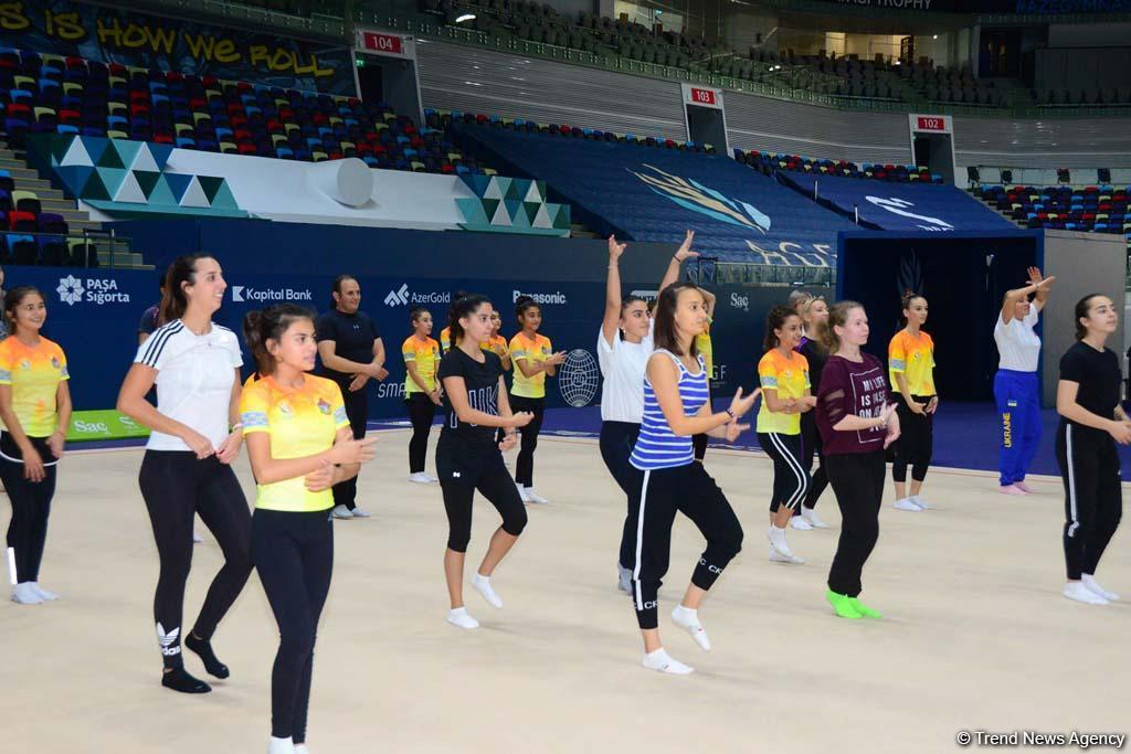 Федерация гимнастики Азербайджана в очередной раз организовала тренерские курсы по аэробной гимнастике