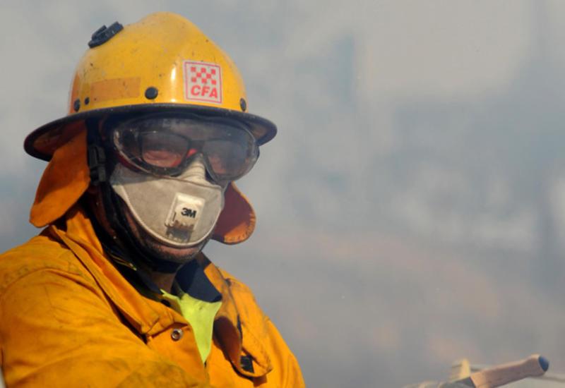 Спасатели Австралии предупредили, что не смогут спасти всех от лесных пожаров