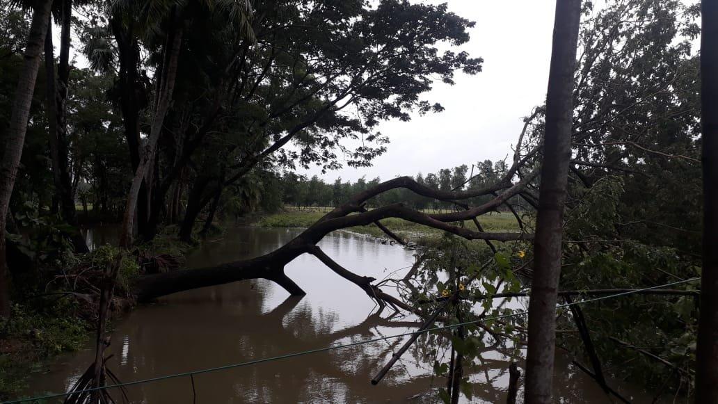Бушующий в Индии циклон продолжает уносить жизни людей