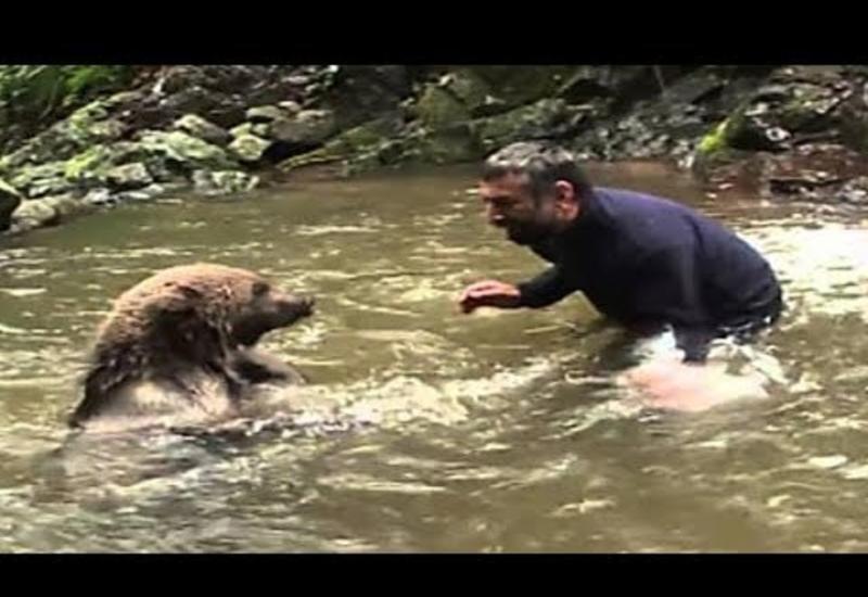 Медведица не могла спасти медвежат из холодной воды, но то, что случилось дальше, удивило весь мир