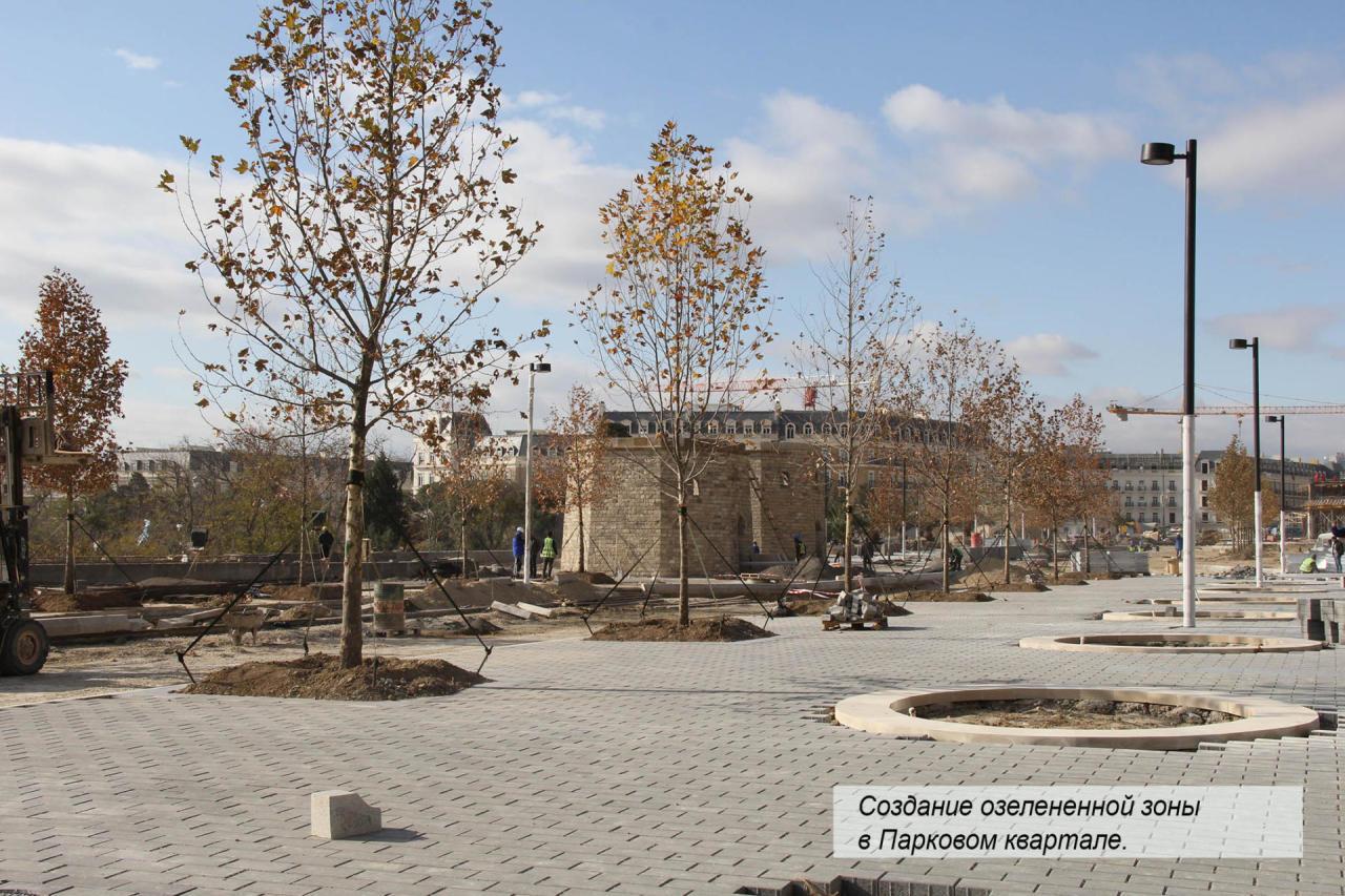 В Baku White City создается очередная зона озеленения