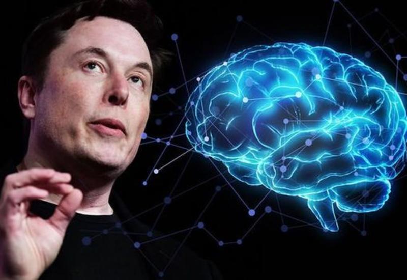 Илон Маск намерен победить шизофрению, аутизм и амнезию в мире