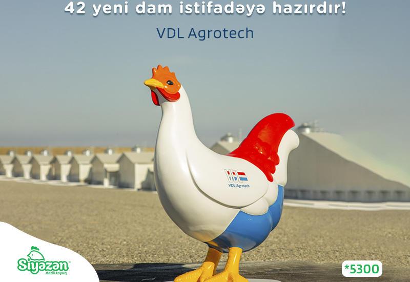 Очередной инновационный шаг от Siyəzən – Вкусной курочки (R)
