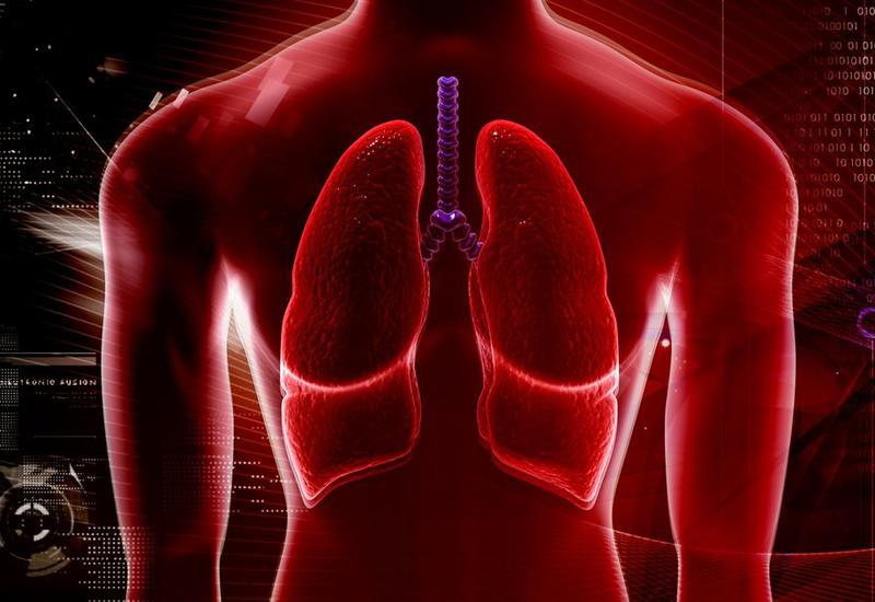 Врачи показали, как выглядят лёгкие после 30 лет курения