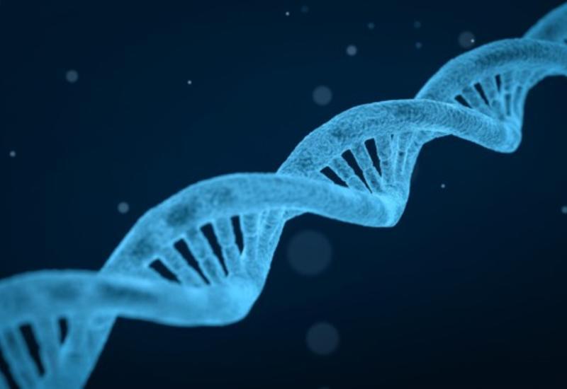 В Германии по делу об убийстве 23-летней давности хотят проверить ДНК у 900 человек