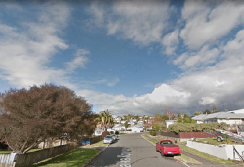 В Новой Зеландии мужчина с мачете 14 часов держал детей в заложниках