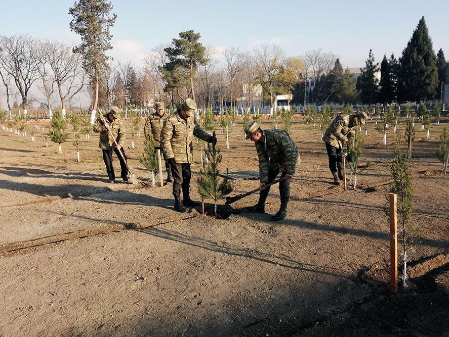 Азербайджанская армия продолжает акцию по посадке деревьев
