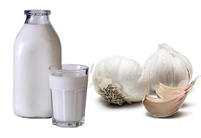Почему бабушки советуют варить чеснок в молоке