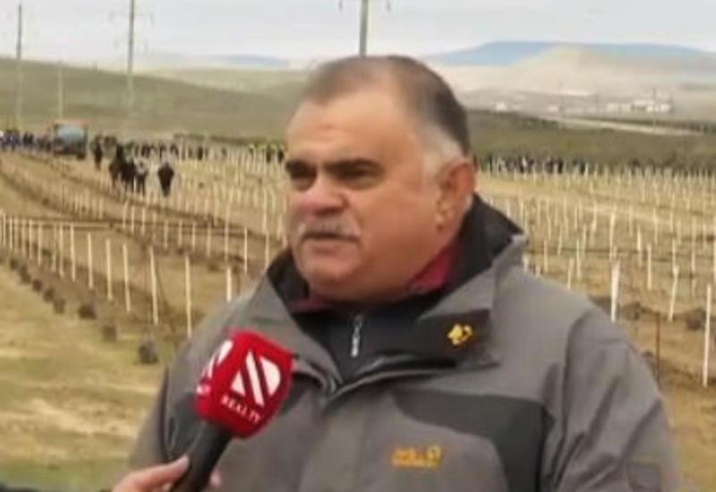 Заместитель гендиректора АМИ Trend в прямом эфире REAL TV о мероприятии по посадке деревьев