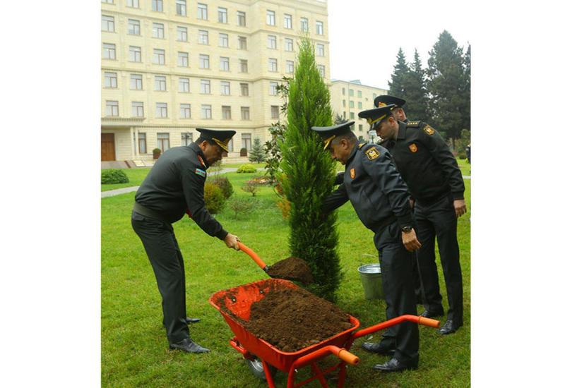 Минобороны Азербайджана приняло участие в акции по высадке деревьев