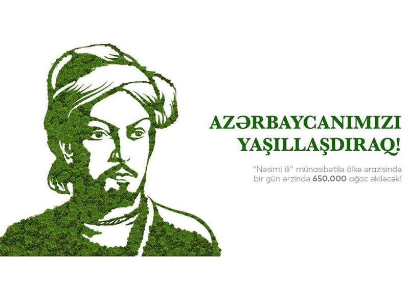 Сегодня во всех регионах Азербайджана пройдет акция по посадке 650 тыс. деревьев