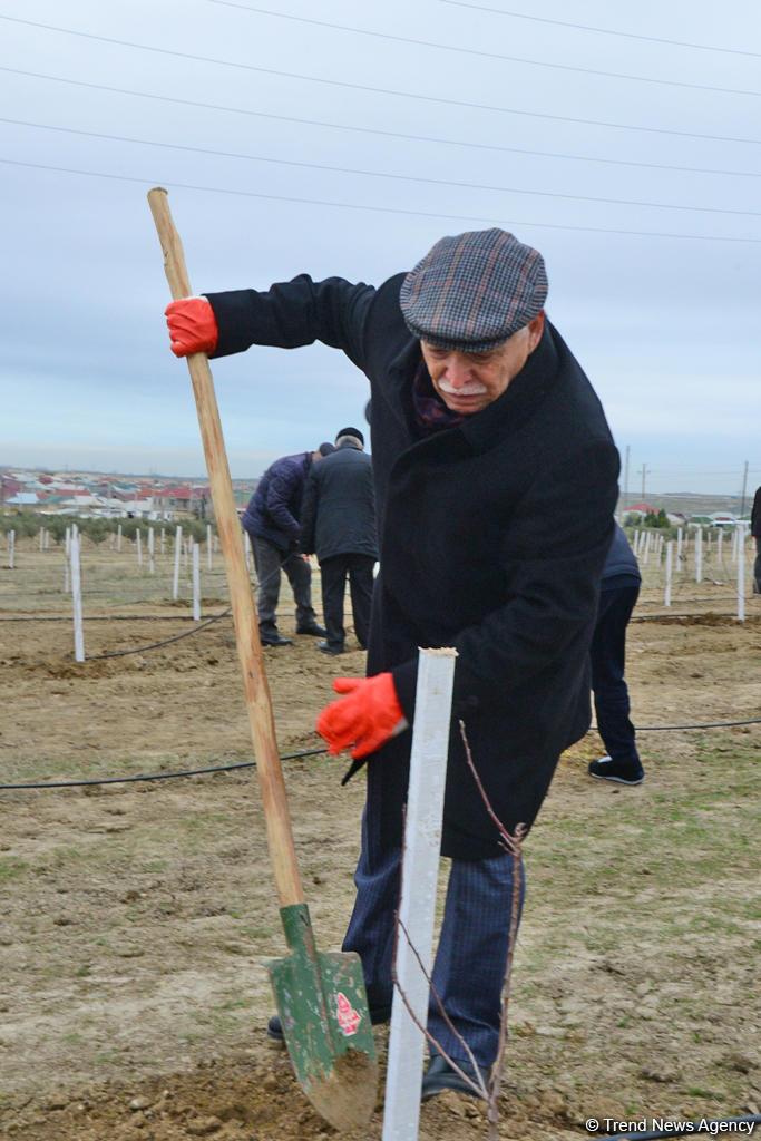 Народный художник Ариф Гусейнов: Через 50 лет Азербайджан превратится в сад Насими