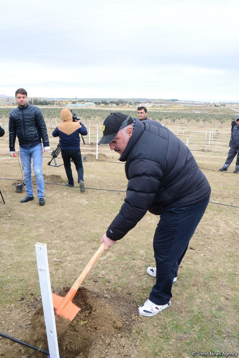 Бахрам Багирзаде: Акция, инициированная Первым вице-президентом Азербайджана Мехрибан Алиевой, воплотила мою детскую мечту