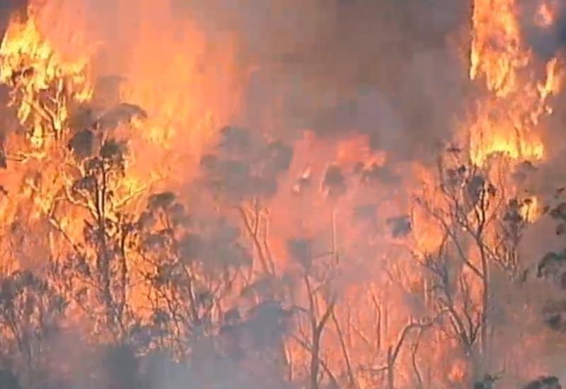 Огненный торнадо охватил парк в Австралии