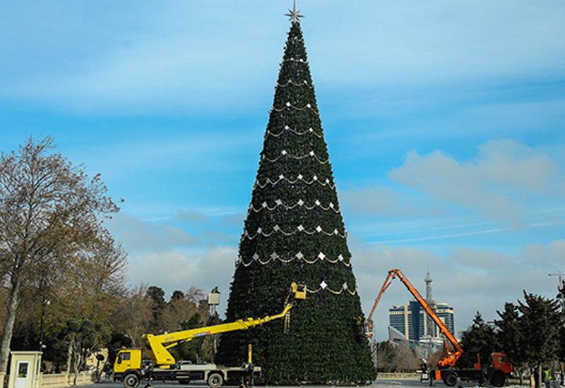 Стало известно место самой высокой праздничной елки в Баку