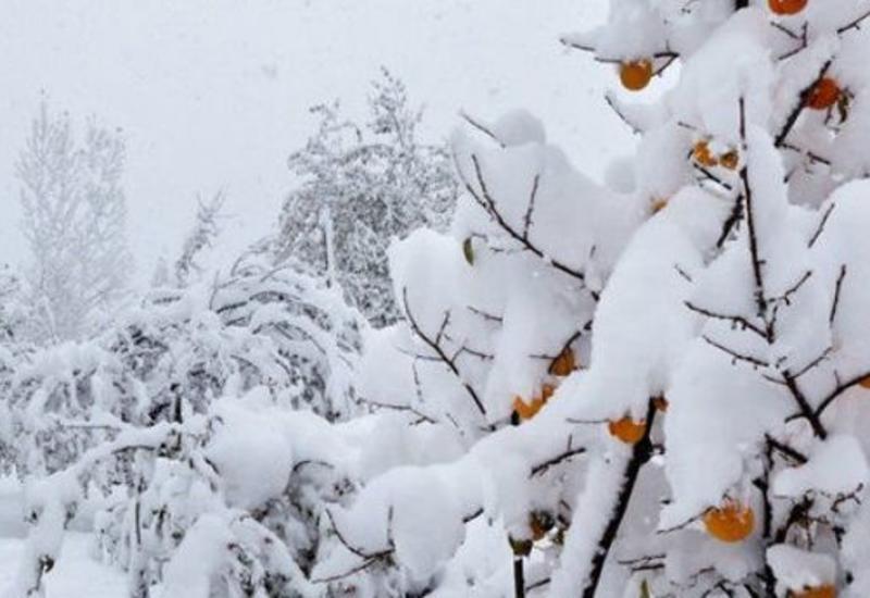 В Азербайджане выпал снег, температура опустилась до -7